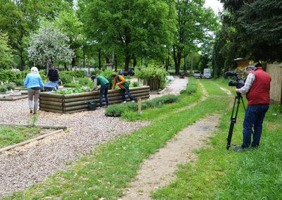 HR im Kräutergarten