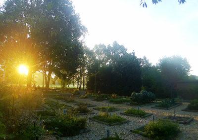 Sonnenaufgang-im-Kräutergarten