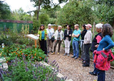 Führung durch den Garten