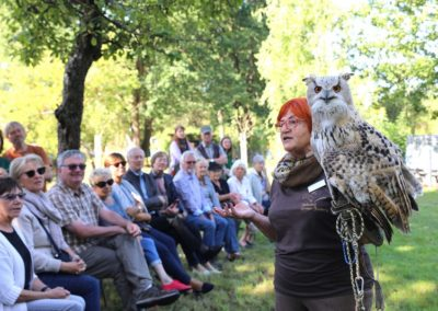 Vortrag der Falknerin vom Falkenhof GroßerFeldberg