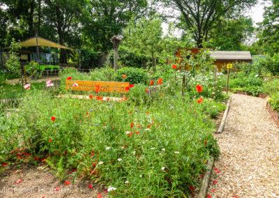 Lehr- und Kräutergarten 2021